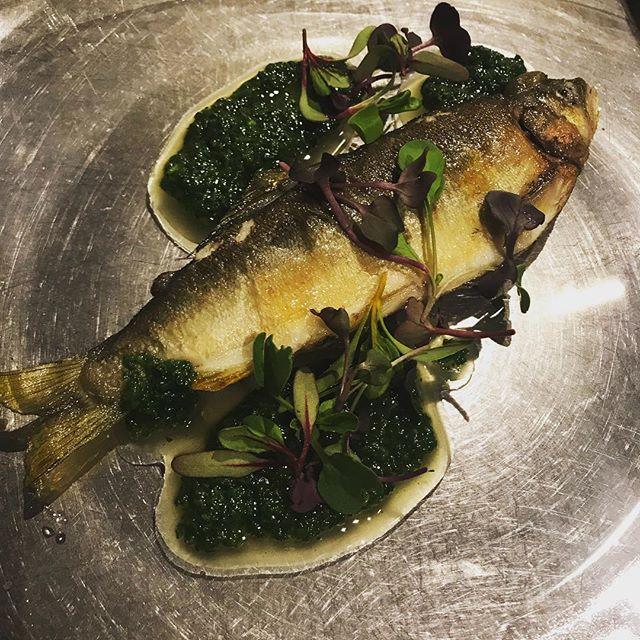 中骨を抜いて、肝とフキノトウのソースを詰めた鮎のソテー。春菊のソース添え。#bistro #restaurant #french #cuisine #nishiazabu #roppongi #nogizaka #poisson #tokyo #ayu #鮎 #ビストロ #魚 #あゆ #春菊 #ふきのとう